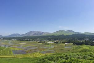 阿蘇のカルデラに広がる水田と阿蘇五岳の写真素材 [FYI04877702]