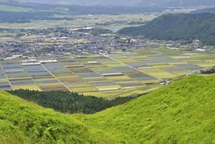 阿蘇の大地に広がる新緑の草原の写真素材 [FYI04877713]