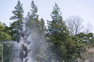 榴岡公園の噴水の写真素材 [FYI04877758]