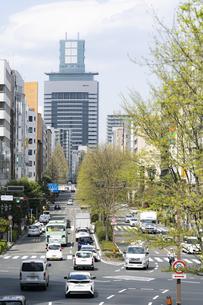 仙台市の街並み 愛宕上杉通の写真素材 [FYI04877765]