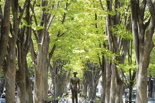 新緑の定禅寺通 オデュッセウス像の写真素材 [FYI04877784]