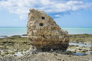 沖縄那覇空港を見渡す瀬長島の海岸に再現された子宝岩 の写真素材 [FYI04878083]