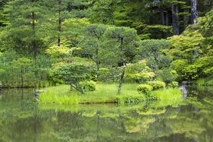 初夏の庭園の写真素材 [FYI04879248]