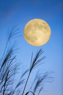 ススキと満月の写真素材 [FYI04879277]