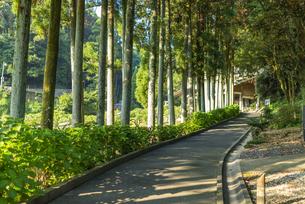 臼杵石仏の入口の写真素材 [FYI04879463]