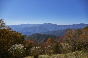 秋の大台ケ原の写真素材 [FYI04879845]