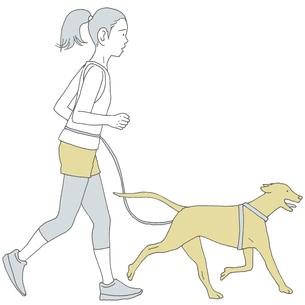 犬と走る女性のイラスト素材 [FYI04879899]