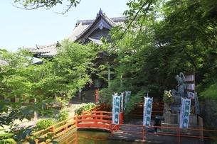 新緑の紀三井寺 本堂の写真素材 [FYI04880368]