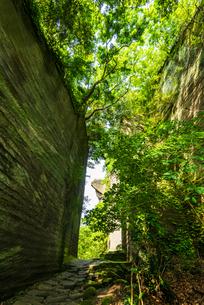鋸山石切り場切り通しより日本寺の百沢観音と地獄のぞきの写真素材 [FYI04880475]