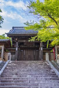 伊豆修禅寺 2014年に改修を終えた山門と日没前の青空の写真素材 [FYI04880590]