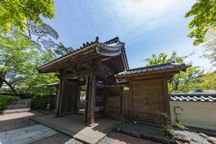 伊豆修禅寺 境内から見る山門の写真素材 [FYI04880716]
