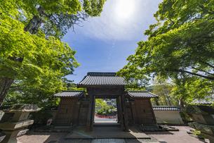 伊豆修禅寺 境内より山門を通して虎渓橋側を臨むの写真素材 [FYI04880719]