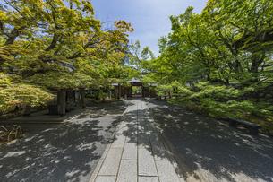 伊豆修禅寺 境内より山門を通して虎渓橋側を臨むの写真素材 [FYI04880732]
