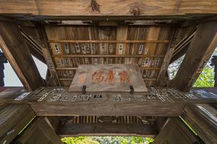 伊豆修禅寺 2014年に改修を終えた山門の写真素材 [FYI04880755]