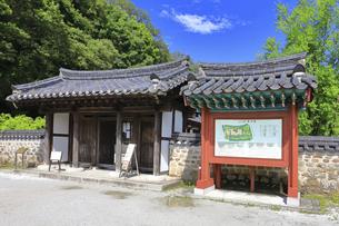 神奈川県 三ツ池公園のコリア庭園の写真素材 [FYI04880793]