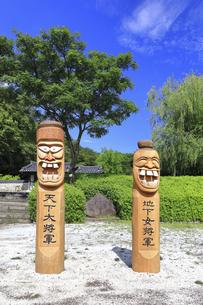 神奈川県 三ツ池公園のコリア庭園の写真素材 [FYI04880796]