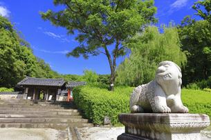 神奈川県 三ツ池公園のコリア庭園の写真素材 [FYI04880797]