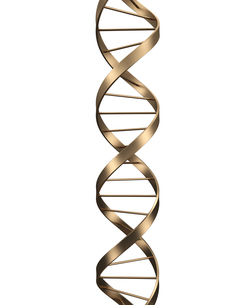 DNAのイラスト素材 [FYI04881754]
