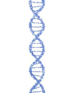 DNA分子のイラスト素材 [FYI04881758]