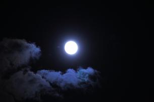 仲秋の名月の写真素材 [FYI04882196]
