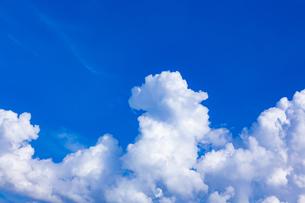 真夏の空の写真素材 [FYI04882263]