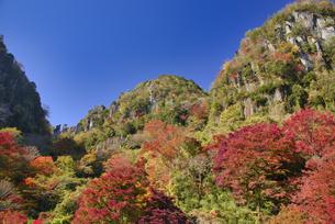 秋の耶馬渓 深耶馬渓の写真素材 [FYI04882332]