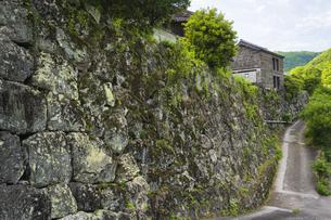 初夏の石垣の村 戸川の写真素材 [FYI04882364]