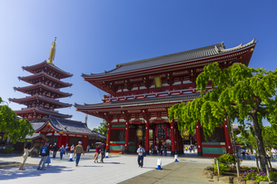 浅草・浅草寺の宝蔵門と五重塔の写真素材 [FYI04883114]