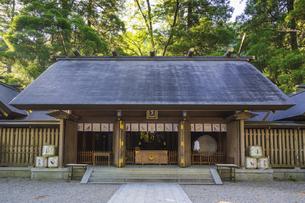初夏の天岩戸神社 西本宮の写真素材 [FYI04883125]