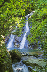 初夏の竜ヶ岩の滝の写真素材 [FYI04883128]