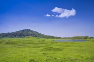 初夏の草千里の写真素材 [FYI04883138]
