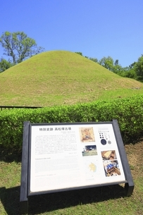 高松塚古墳の写真素材 [FYI04883259]