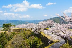 関西の風景 朝来市 春の竹田城跡の写真素材 [FYI04883280]