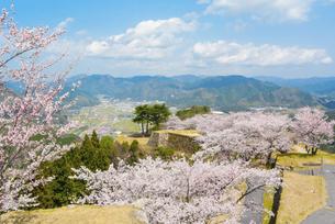 関西の風景 朝来市 春の竹田城跡の写真素材 [FYI04883281]