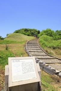 天武・持統天皇陵(檜隈大内陵)の写真素材 [FYI04883293]