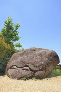 明日香村 亀石の写真素材 [FYI04883300]