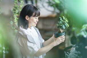 笑顔で観葉植物の様子を見る若い女性の写真素材 [FYI04883373]