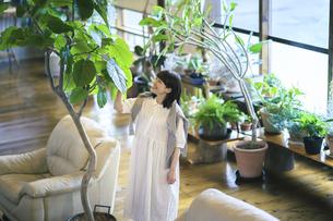 笑顔で観葉植物の様子を見る若い女性の写真素材 [FYI04883385]