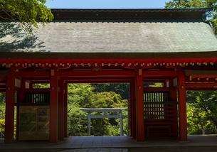 香取神宮 楼門の写真素材 [FYI04883871]