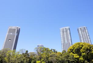 新緑の浜離宮恩賜庭園から見る高層タワーマンションの写真素材 [FYI04883872]