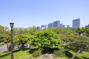 日比谷公園の三笠山から見る丸の内の高層ビル群の写真素材 [FYI04883892]