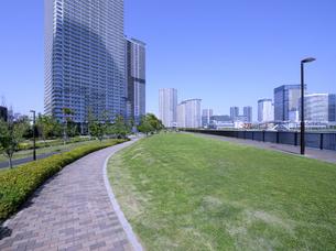石畳の遊歩道の続く晴海臨海公園の広場と高層タワーマンションの写真素材 [FYI04883900]