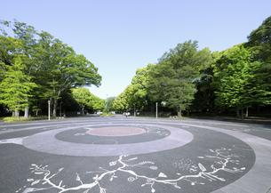 新緑の代々木公園原宿門の時計台広場の写真素材 [FYI04883906]