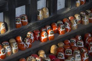 勝尾寺本堂に並んだダルマの写真素材 [FYI04884276]