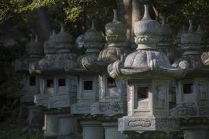 勝尾寺の石灯篭とダルマの写真素材 [FYI04884300]