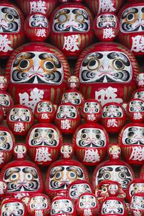 勝尾寺の勝ちダルマの写真素材 [FYI04884310]