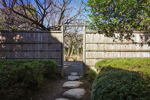 大田黒公園の庭(東京都杉並区)の写真素材 [FYI04884571]