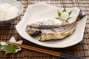 あじ開きの焼き魚の写真素材 [FYI04885114]