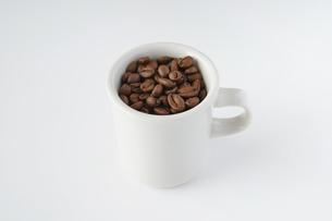 コーヒー豆の写真素材 [FYI04885198]