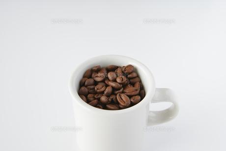 コーヒー豆の写真素材 [FYI04885199]